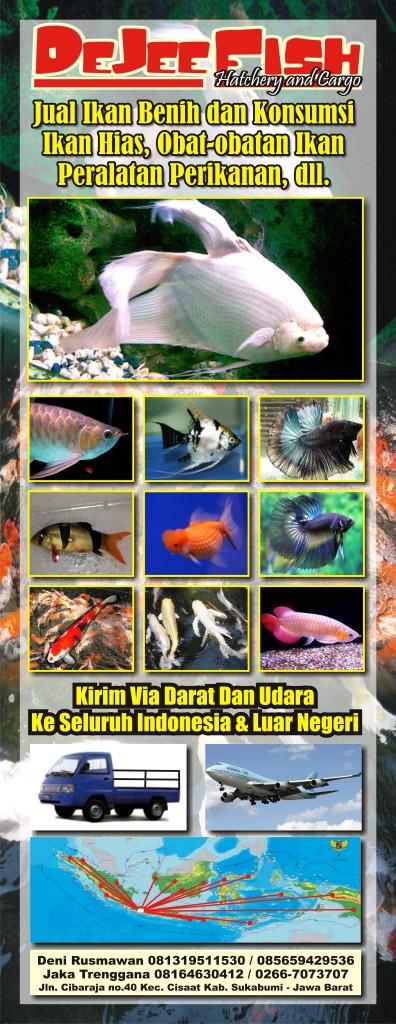 X-Banner ikan hias